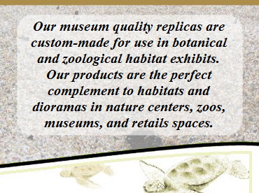 Our museum quality replicas are custom-made for use in botanical and zoological habitat exhibits