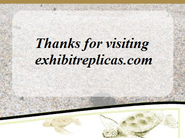 Contact Exhibit Replicas if you are looking for a specific bird, animal, fish or crustacean replica